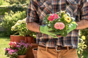 création jardinier
